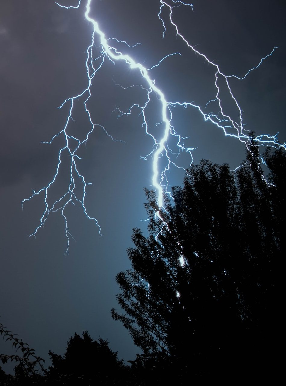 Sturm Wald Blitzschlag