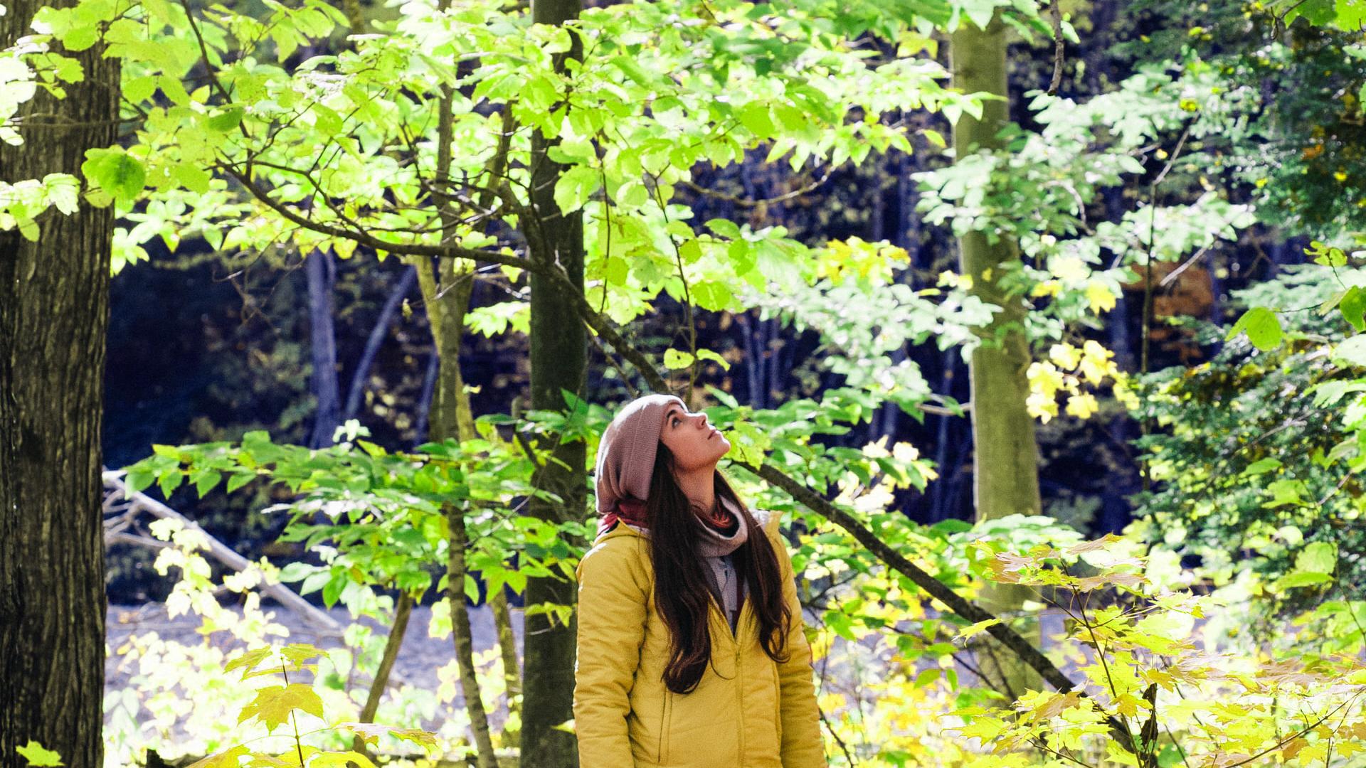 Waldbesitzerin schaut kritisch auf ihren Wald